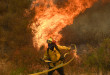 A fire fighter battles the so-called Sand Fire in the Angeles National Forest near Los Angeles, California, United States, July 25, 2016. REUTERS/Gene Blevins       TPX IMAGES OF THE DAY